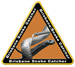 Brisbane Snake Catcher